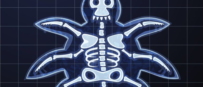 Cyber Security For Medical Imaging Devices Found Wanting